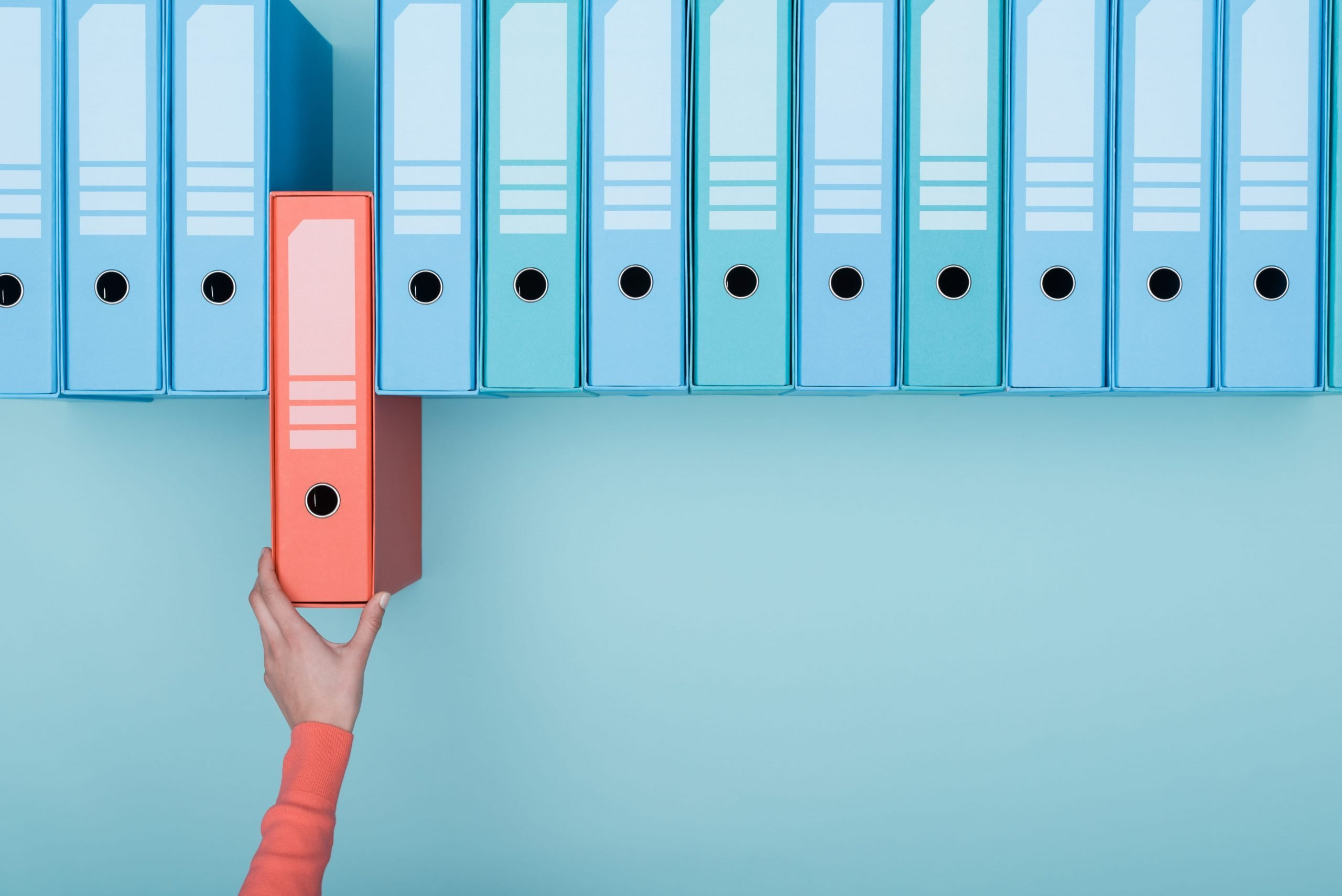 Guarda tus documentos
